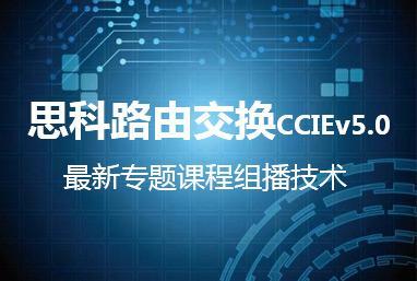 思科路由交换CCIEv5.0最新专题课程组播技术