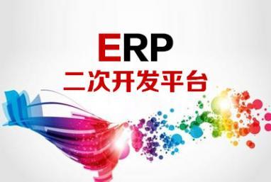 ERP二次开发平台
