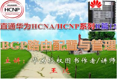 【直通华为HCNA/HCNP系列R篇-12】BGP路由配置与管理