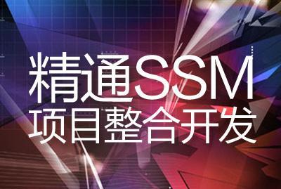 精通SSM项目整合开发