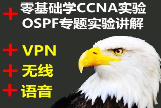 初级学CCNA实验+OSPF专题实验+无线+语音+VPN