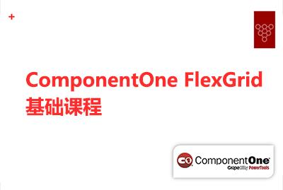 ComponentOne FlexGrid基础课程
