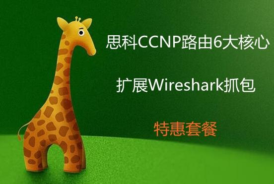 思科CCNP路由6大核心--贈送wireshark抓包