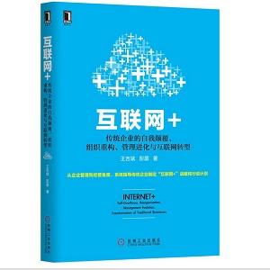 互联网+:传统企业的自我颠覆、组织重构、管理进化与互联网转型