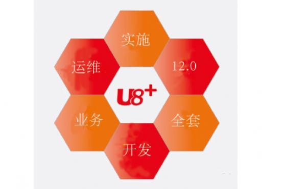 用友U8ERP全套、二次开发UAP