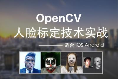 OpenCV人脸标定技术实战 适合iOS/Android/Mac