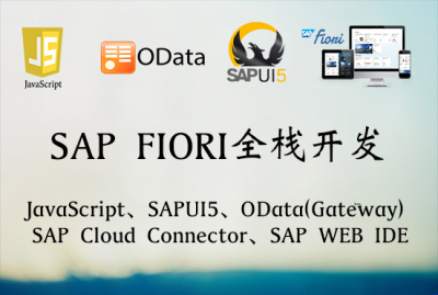 JavaScript + OData Service + SAPUI5(SAP FIORI全栈开发视频分享)