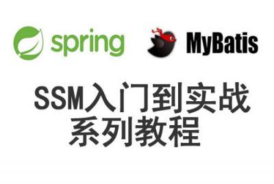 SSM从入门到实战系列视频教程专题  title=
