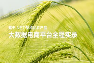 基于.NET架构的农产品大数据电商平台全程实录