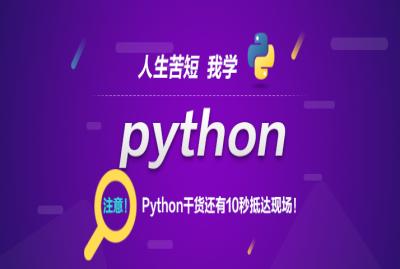 《Python全栈工程师》补差价专拍
