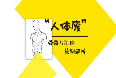 人体骨骼与肌肉动态基础入门教程