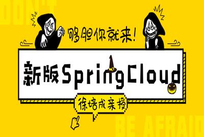 徐培成IDEA版SpringCloud教程