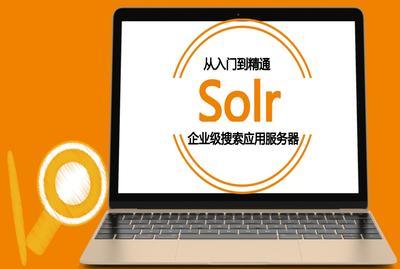Solr企业级搜索引擎入门至精通含项目案例
