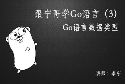 跟宁哥学Go语言(3):Go语言数据类型视频教程