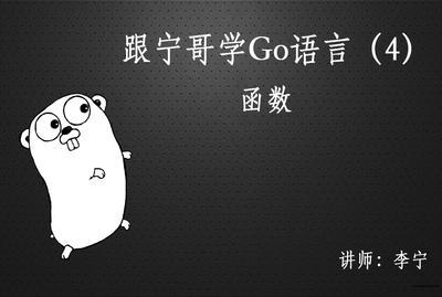 跟宁哥学Go语言视频课程(4):函数