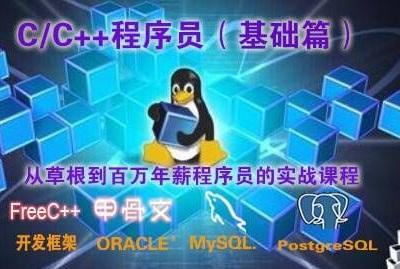 C/C++程序员(基础篇)视频教程