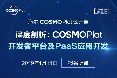 海尔 COSMOPlat 开发者生态公开课——深度剖析:COSMOPlat开发者平台及PaaS应用开发