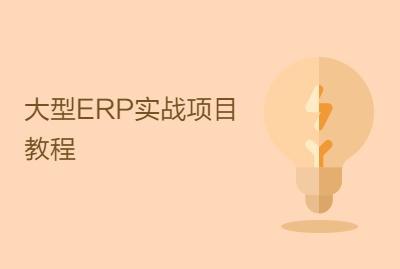 大型ERP实战项目教程