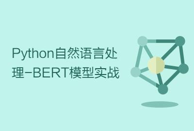 Python自然语言处理-BERT模型实战