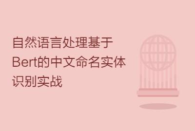 自然语言处理基于Bert的中文命名实体识别实战