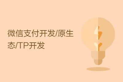 微信支付开发/原生态/TP开发