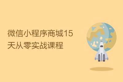 微信小程序商城15天从零实战课程