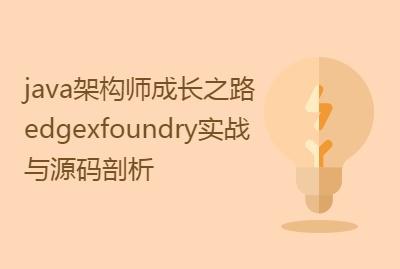java架构师成长之路 edgexfoundry实战与源码剖析