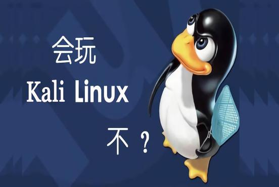 白帽子黑客网络攻防与Kali Linux渗透测试实战教程