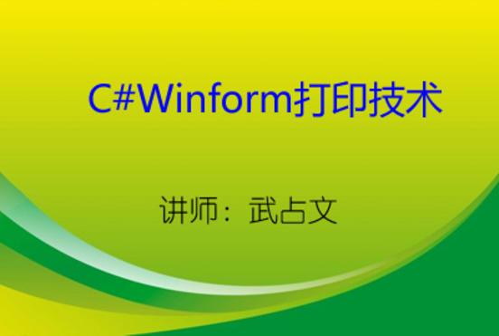 C#报表与打印技术