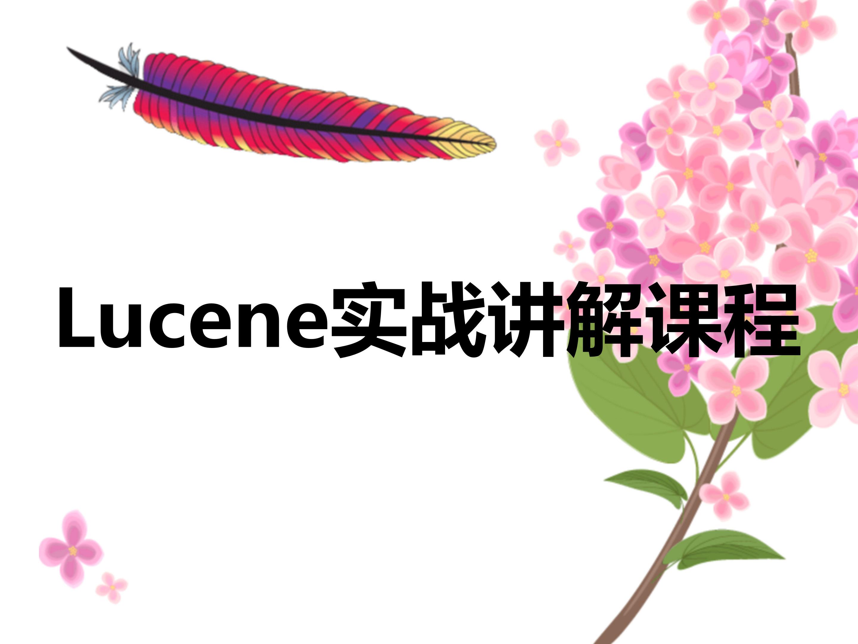Lucene实战讲解课程