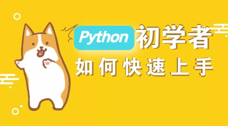 Python入门到精通