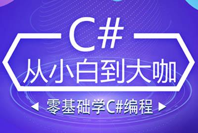 零基础学C#编程—C#从小白到大咖
