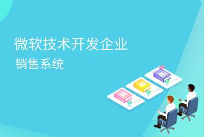 微软技术开发企业销售系统