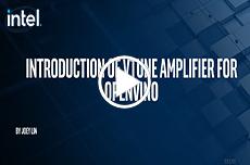 英特尔® VTune™ Amplifier for OpenVINO™ 介绍